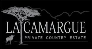 La Camargue1
